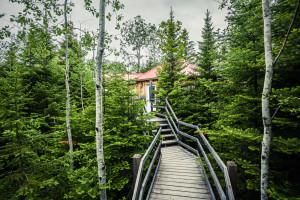 Wooden pathway to Pegase