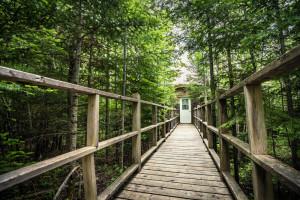 Wooden pathway to Oiseau de Paradis